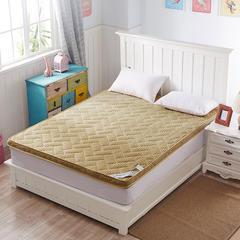 4D加厚透气床垫(一) 1*2米 4d驼