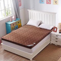 4D加厚透气床垫(一) 1.2*1.9米 4d棕