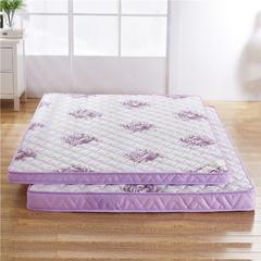 2017新款记忆棉床垫(6厘米款) 0.9米 国色天香
