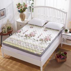 2017新款记忆棉床垫(6厘米款) 0.9米 花开富贵