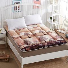法兰绒绗缝床垫 0.9*2米 梦幻都市