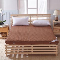 加厚单边10厘米4d和法兰绒新款床垫(10厘米单边)一 0.9*2米 4d咖