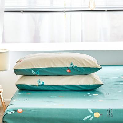 2020新款小清新风全棉12868单品枕套(48*74cm/对) 48*74cm/对 小萝卜 -黄