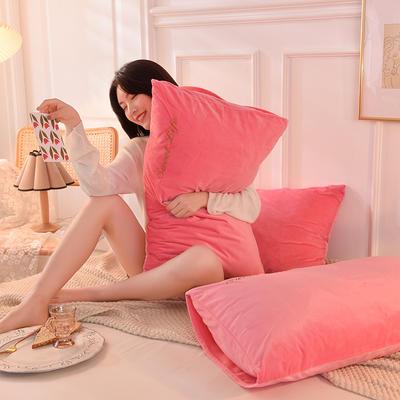 2020新款加厚水晶绒刺绣炫彩系列-单枕套 48cmX74cm/对 炫彩 粉红