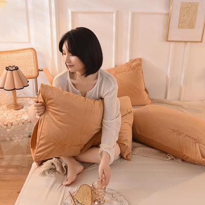 2020新款加厚水晶绒刺绣炫彩系列-单枕套 48cmX74cm/对 炫彩 狮驼