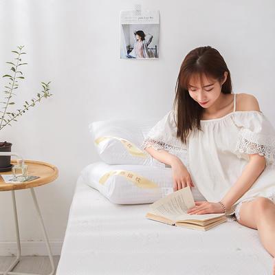 2019新款-缎条热熔枕 48*74cm