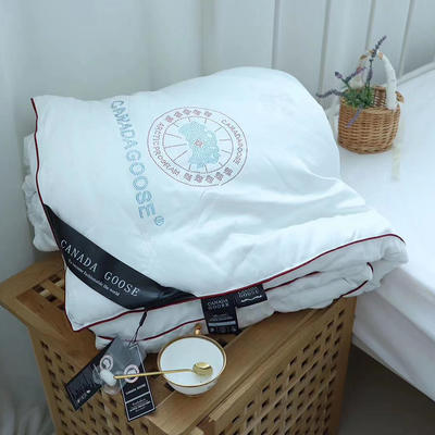 加拿大鹅蚕丝被子冬被加厚保暖蚕丝被芯秋冬被 200x230cm(6斤) 白色