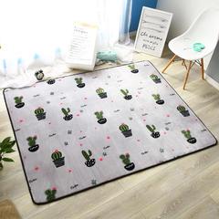 奕晨 法莱绒地垫北欧加厚卧室客厅茶几地毯飘窗垫可定制 仙人掌 95*95cm 仙人掌