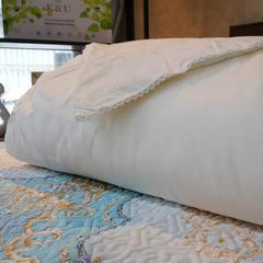 桑蚕丝被子被芯夏被春秋被冬被 200X230cm 白色蚕丝被(填充1斤)