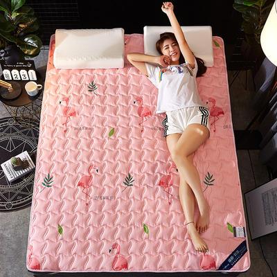 2019新款学生宿舍床垫 绗缝薄款ins印花防滑床垫宿舍床褥 90*200cm 火鸟