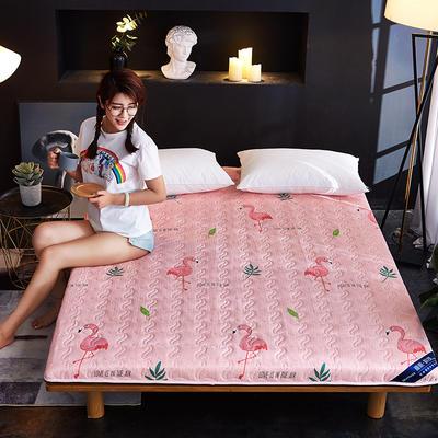 新款水洗棉印花床垫加厚 网红ins学生宿舍床垫 100*200cm 火鸟