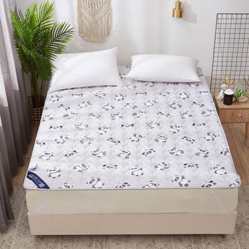 2019新款水洗棉床垫褥子2.5cm