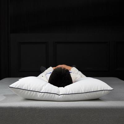 新款莫代尔绣花云绒枕/48*74cm出口枕芯成人酒店枕头 单边