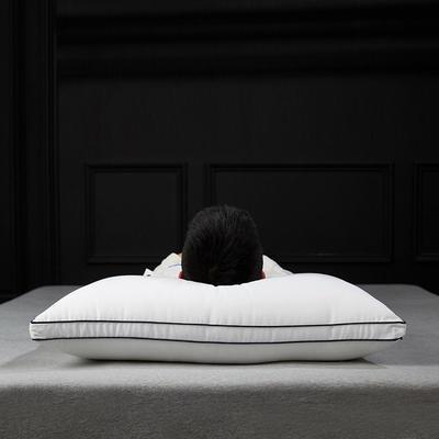新款莫代尔绣花云绒枕/48*74cm出口枕芯成人酒店枕头 立体
