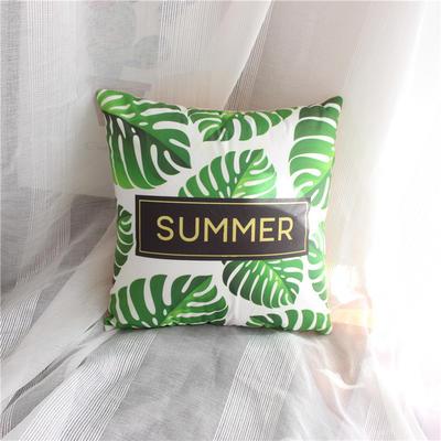 2018新品简约抱枕 40X40cm(含芯) 绿叶(新增)