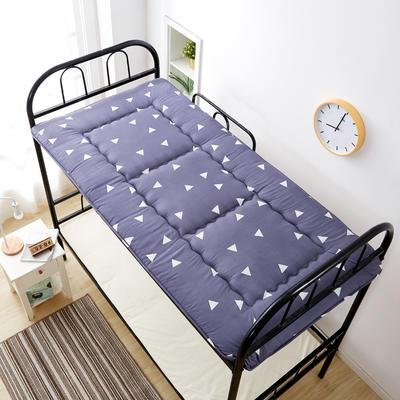 新品硬质棉床垫 单人床垫 宿舍床垫 学生宿舍床品 0.9*2M 三角时代