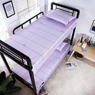 2020新款专利学生宿舍寝室冰丝凉席 单人上下铺寝室凉席枕席二件套 1.2米款145*200 2件套 爱巢-紫