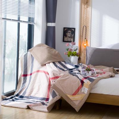 无印良品风格100%纯棉水洗色织新疆棉花夏被夏凉被空调被被子被芯 150x200cm 巴伯瑞格