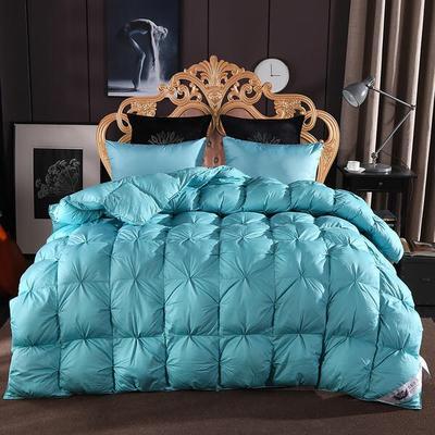 2020新款促销扭花羽绒被冬被被子被芯 200*230cm6.5斤 蓝