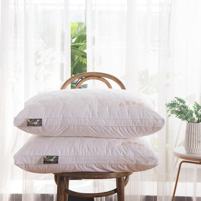 2019新款天然乳胶枕(48×74cm) 天然乳胶枕高度:25厘米(睡下约8-10