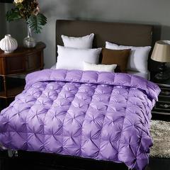 2018热卖-柔赛丝系列多色羽绒被(春秋被) 200X230cm 紫色(50绒价