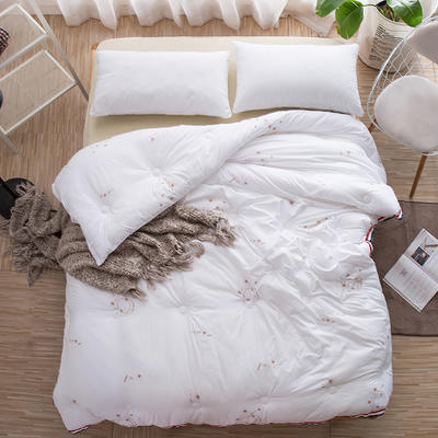 2018新款贝贝绒暖冬被 150x200cm(4.5斤) 暖绒-白