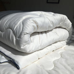 全棉防螨抗菌棉花床垫 120x200cm 全棉棉花床垫