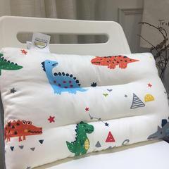 2018新款恐龙童枕 恐龙童枕30*50cm/一只