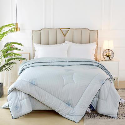 2020新款针织棉子母被被子被芯冬被 子被150x200cm  3.8斤 典雅  蓝
