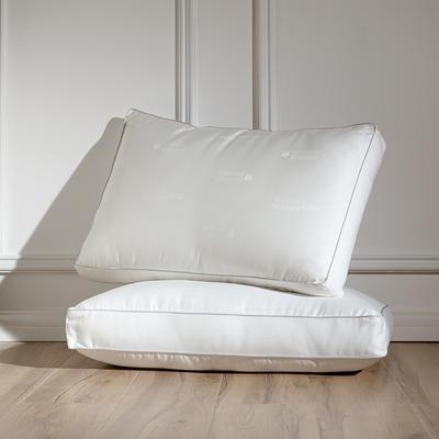 2019新款仙护盾枕芯枕头枕芯 仙护盾枕芯