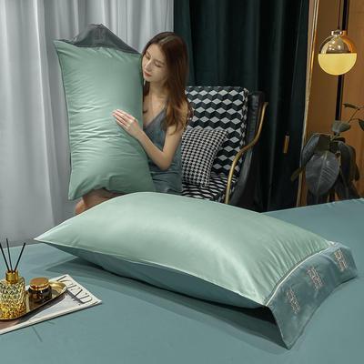 2021新款艾迪&卡夫-单枕套 枕套48*74 艾迪-梵星蓝+浅石蓝