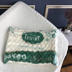 2018新款V牌乳胶枕-长55cm  宽34cm  高6-10cm V牌乳胶枕(带包装)/一只