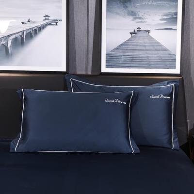 2020新款-水洗真丝枕套 48cmX74cm/一对 安琪拉-藏蓝