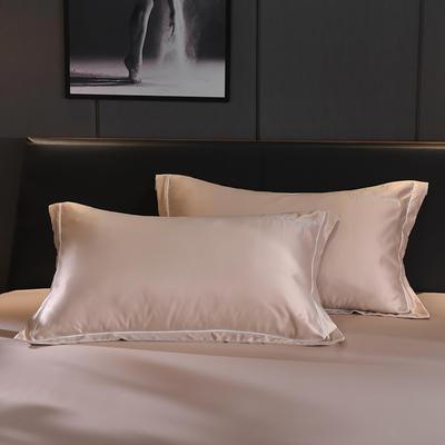 2020新款-水洗真丝枕套 48cmX74cm/一对 安琪拉-香槟