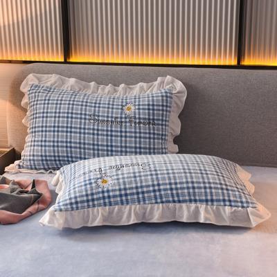 2020新款-牛奶绒枕套 48*74cm枕套一对 蓝色