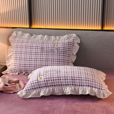2020新款-牛奶绒枕套 48*74cm枕套一对 紫色