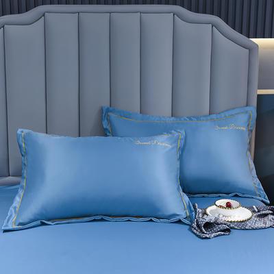 2021新款水洗真丝枕套 48cmX74cm 安其拉-宾利蓝