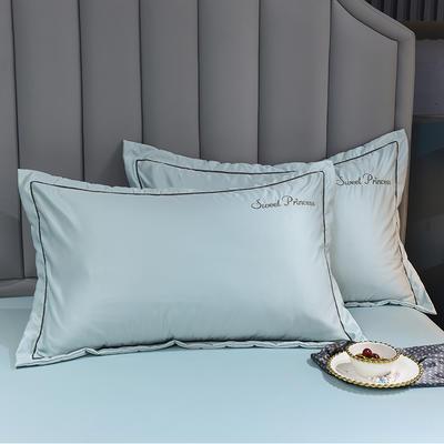 2021新款水洗真丝枕套 48cmX74cm 安其拉-梵星蓝