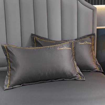 2021新款水洗真丝枕套 48cmX74cm 安其拉-高级灰