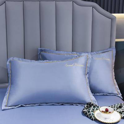 2021新款水洗真丝枕套 48cmX74cm 安其拉-紫灰