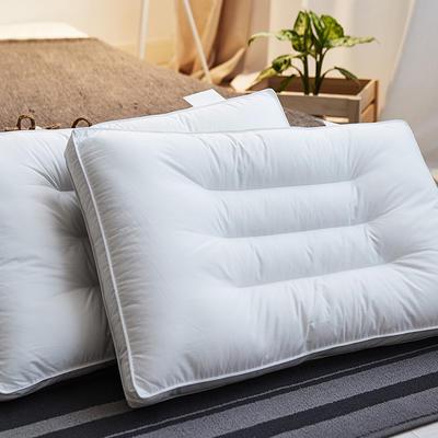 2019新款吸湿透气荞麦枕 吸湿透气荞麦枕48*74