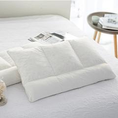枕套枕头系列 2018新款乳胶枕系列1 小款49*29手提袋