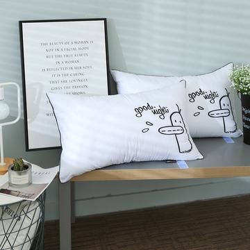 2021新款全棉小清新刺绣羽丝绒枕头韩式可水洗枕头枕芯48*74cm/只