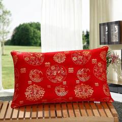 珠光浆特价枕芯45*70定型保健枕 1斤3两一个 珠光浆特价枕芯