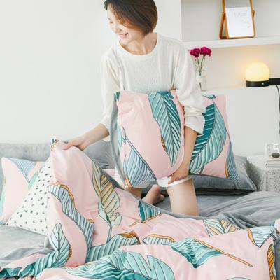 2019新款-棉加绒四件套 床单款三件套1.2m(4英尺)床 粉色芭叶