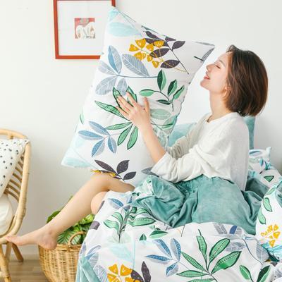 2019新款-棉加绒四件套 床单款三件套1.2m(4英尺)床 清新绿意