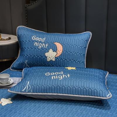 (总)丽芙2021凉感丝乳胶枕套(可与圆网床笠款组合三件套) 48cmX74cm/对 星月神话-枕套