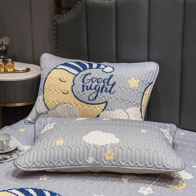 (总)丽芙2021凉感丝乳胶枕套(可与圆网床笠款组合三件套) 48cmX74cm/对 月亮宝宝-枕套