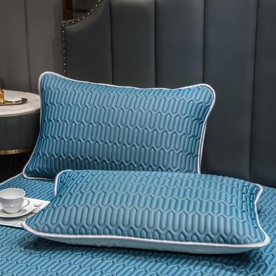 (总)丽芙2021凉感丝乳胶枕套(可与圆网床笠款组合三件套) 48cmX74cm/对 淡雅蓝-枕套
