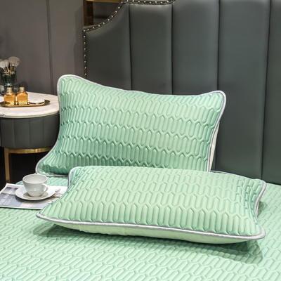 (总)丽芙2021凉感丝乳胶枕套(可与圆网床笠款组合三件套) 48cmX74cm/对 清柠绿-枕套